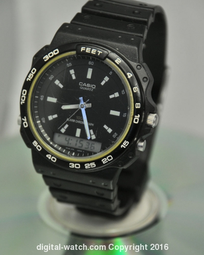 CASIO-ARW-310