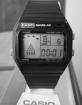 CASIO-GM-40